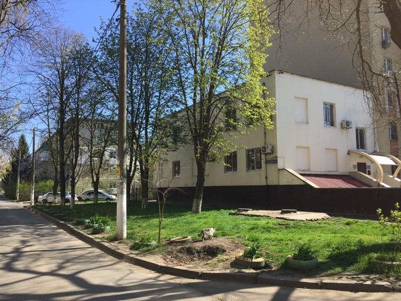 продажа офиса номер C-68384 в Малиновском районе, фото номер 11